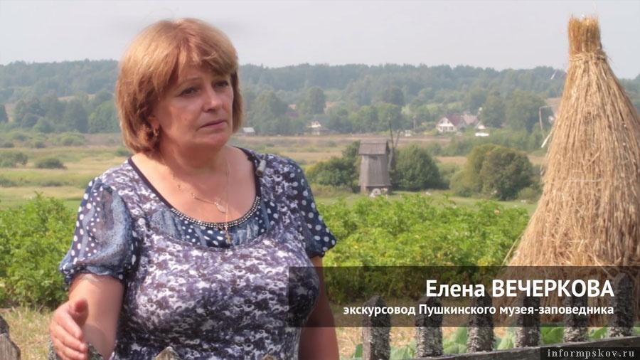 Елена Вечеркова