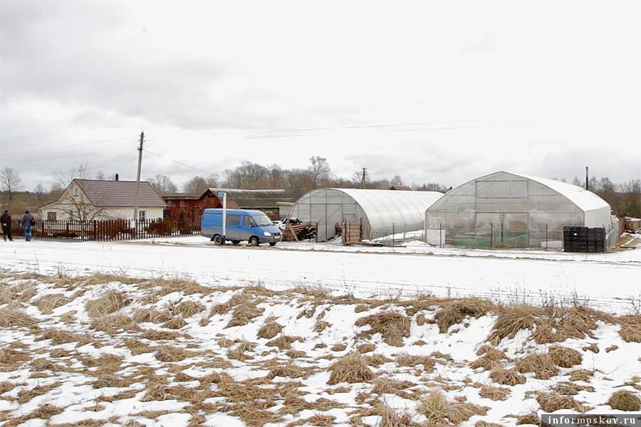 Слева - дом семьи, справа - теплица, купленная на средства областного гранта