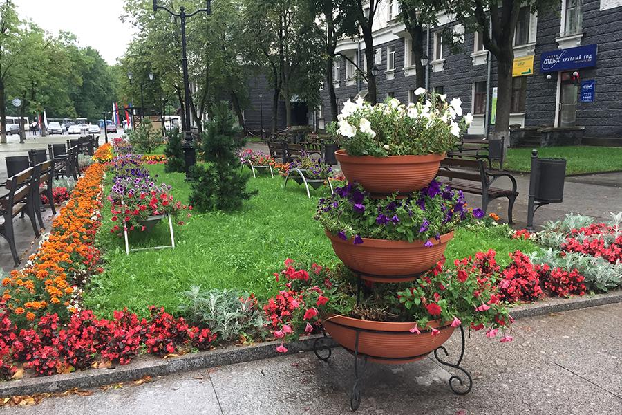 На фото: Клумбы и цветники на улице Пушкина