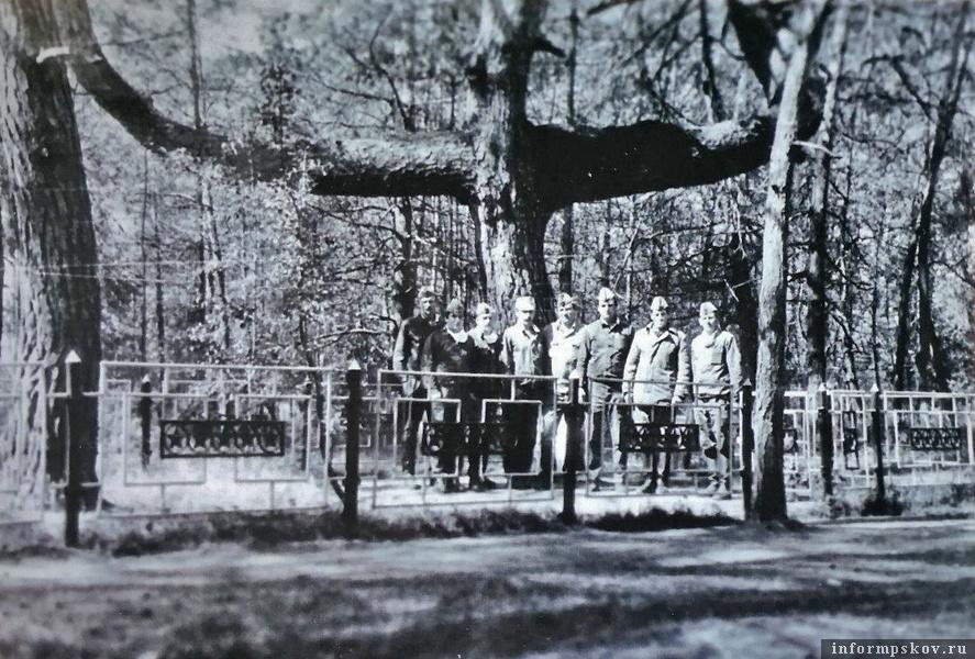 Дерево-крест около Чернобыля, 1987 (фото Виктора Петрова)