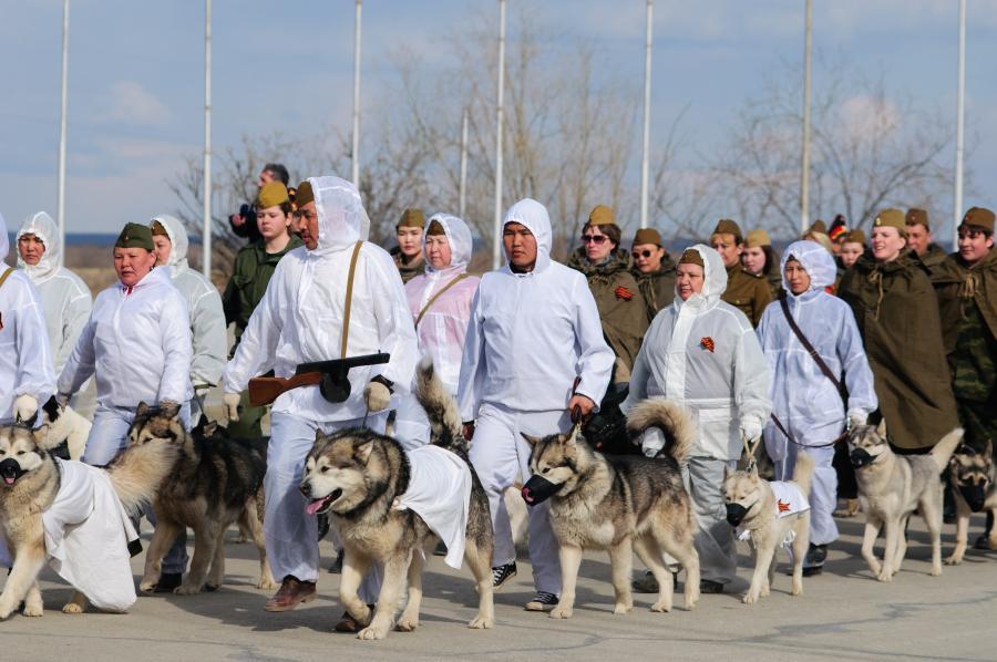 Собаки на Параде Победы в Якутске, 2016 год. Фото с сайта aeslib.ru