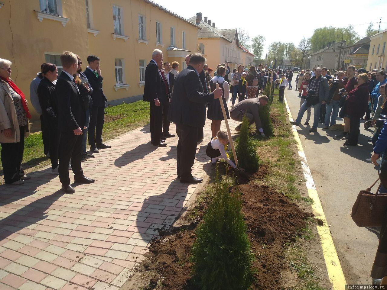 На фото: Высадка Аллеи памяти на улице Ленина в Идрице. 30 апреля.