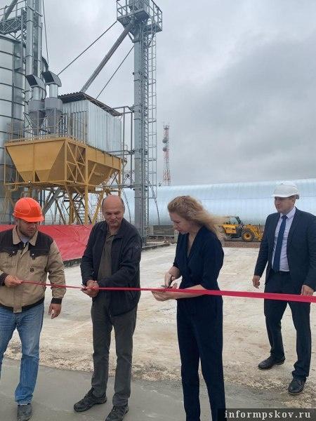 Элеваторы псковская область конвейер завода ваз
