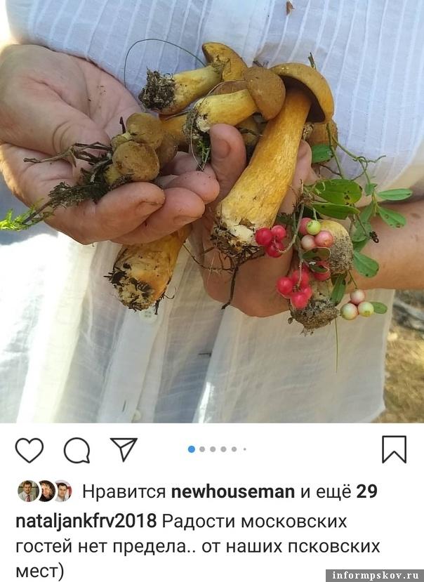 Instagram Натальи Никифоровой