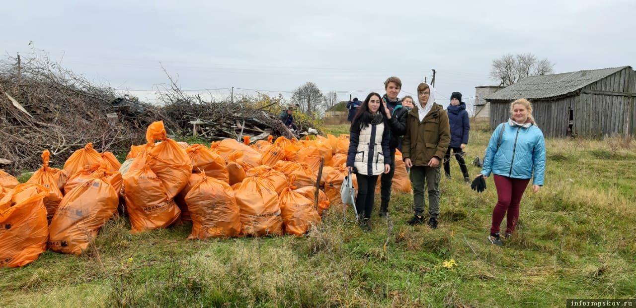 Более 30 кубометров мусора собрали на острове  Залита
