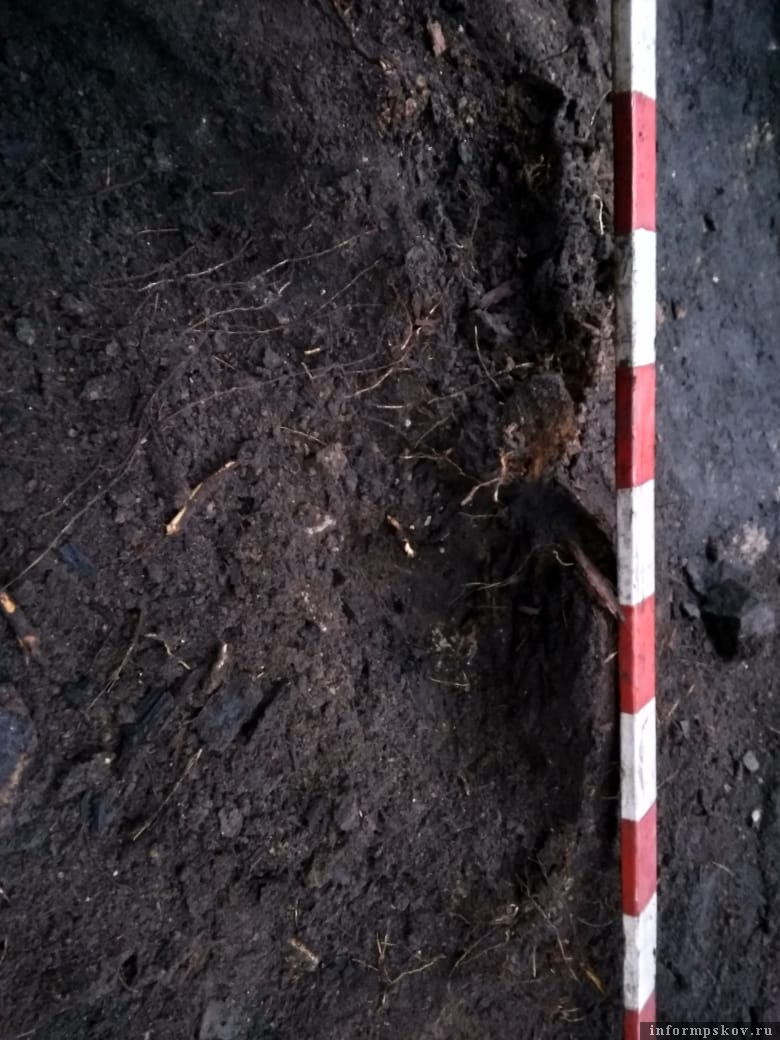 Археологический раскоп в сквере Народовластия в Пскове подвергся нашествию «черных копателей»