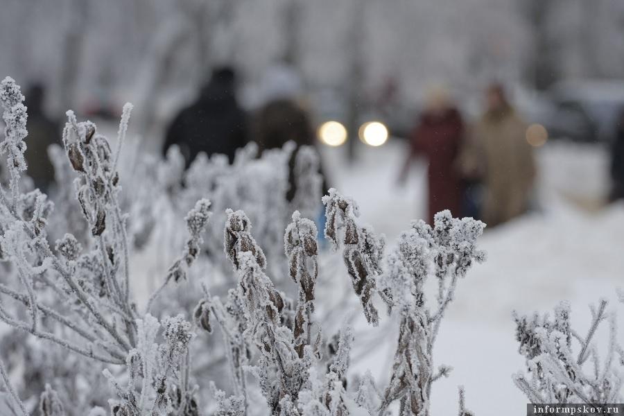 В январе 2010 года Псков готовился к Всероссийской Масленице. На реках стоял лед. Горд был засыпан снегом. Фото: Андрей Степанов.