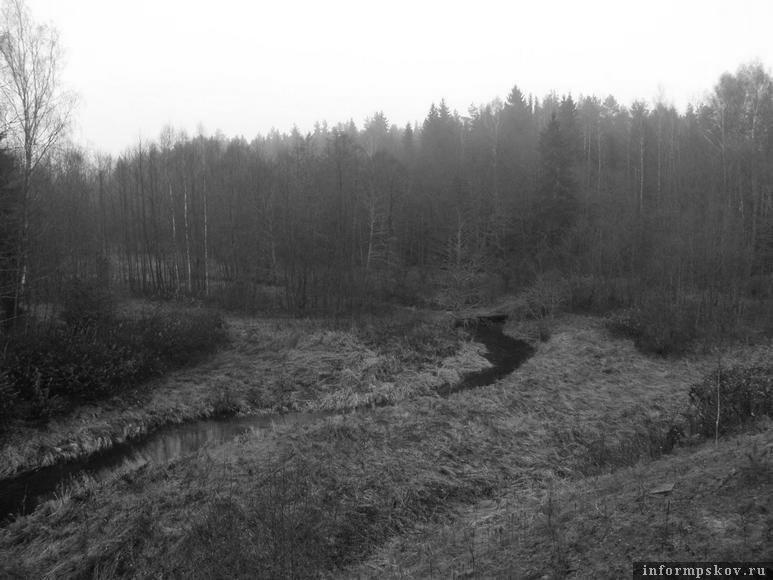 Ручей Пеляка. Фото Игоря Пастухова (wildlife.by)