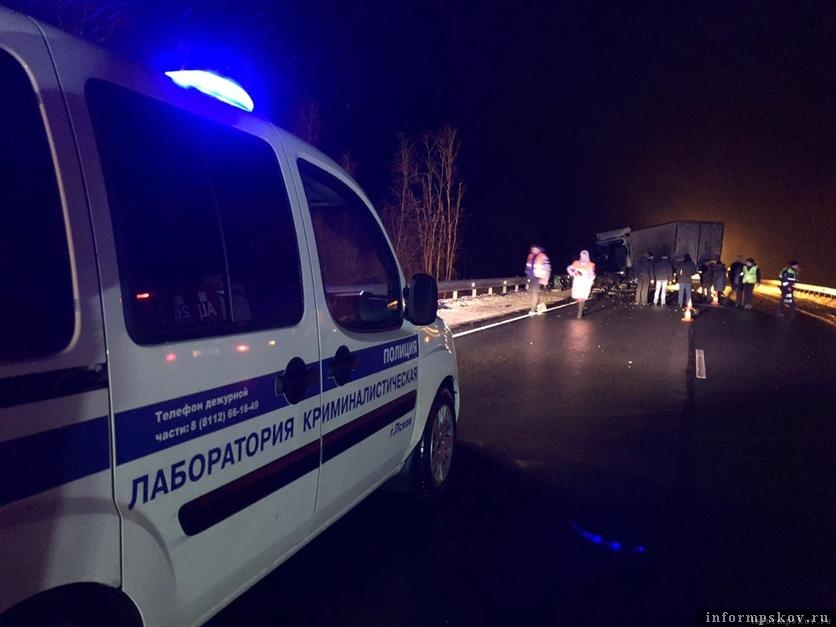 Фото: УМВД России по Псковской области.
