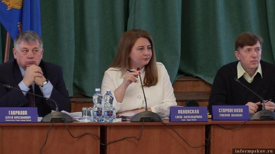 Городские депутаты поддержали инициативу коллеги. Фото: ПАИ
