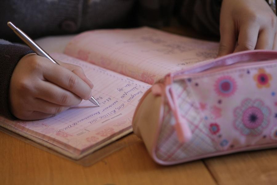 В данный период важно, чтобы ребенок усвоил программу, а не нахватал двоек. Фото: Андрей Степанов.