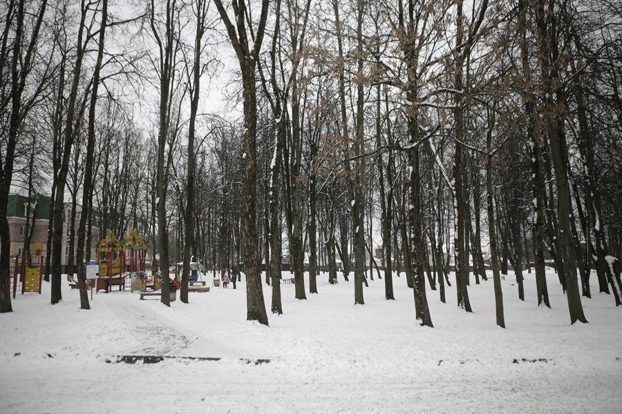 Так парк Гагарина выглядел этой зимой. Фото: Андрей Степанов.