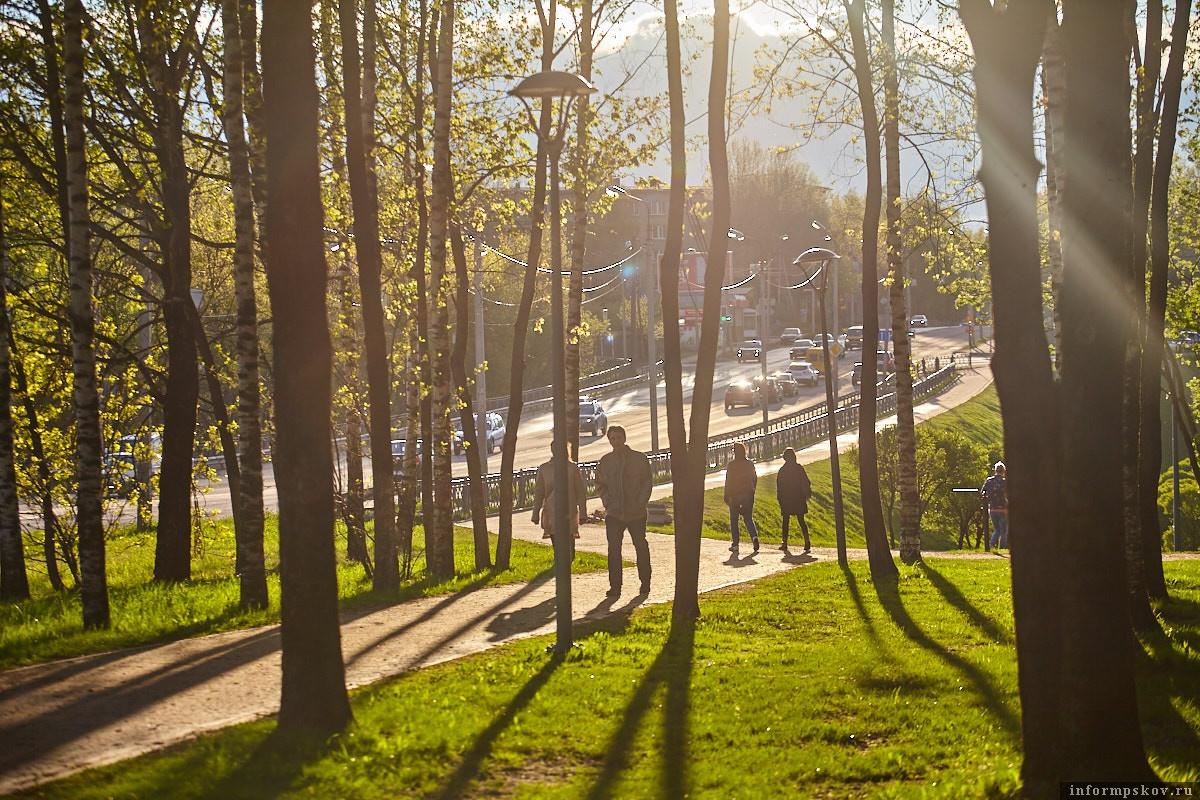 В четверг, 28 мая, в Псковской области будет тёплая погода и возможны осадки, а ближе к вечеру выглянет солнце. Фото: Дарья Хваткова.