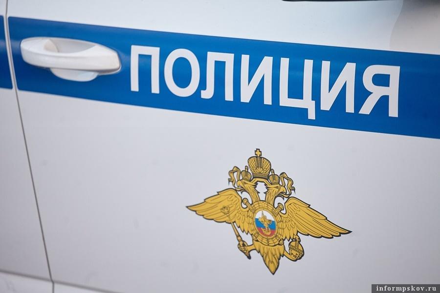 Фото: Дарья Хваткова.