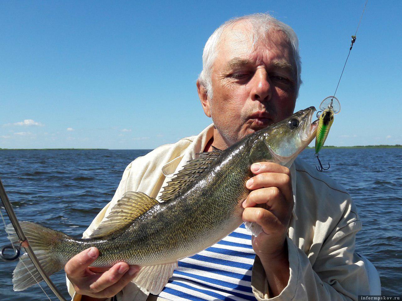 Второй год в Раскопельском заливе великолепные уловы судака. Как такому улову не порадоваться?