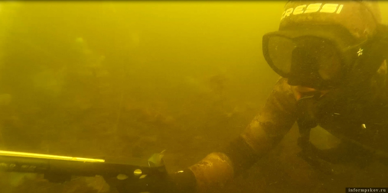 Фото: федерация подводного спорта Псковской области