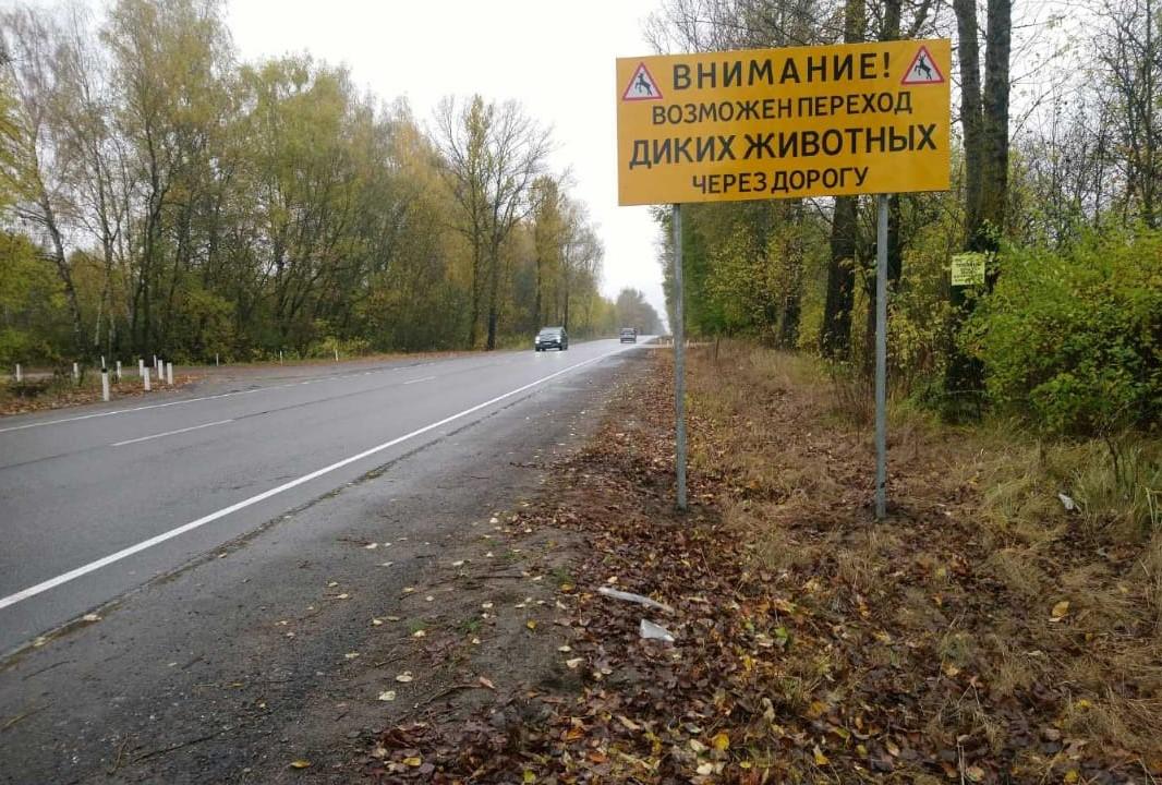Фото: комитет по транспорту и дорожному хозяйству Псковской области