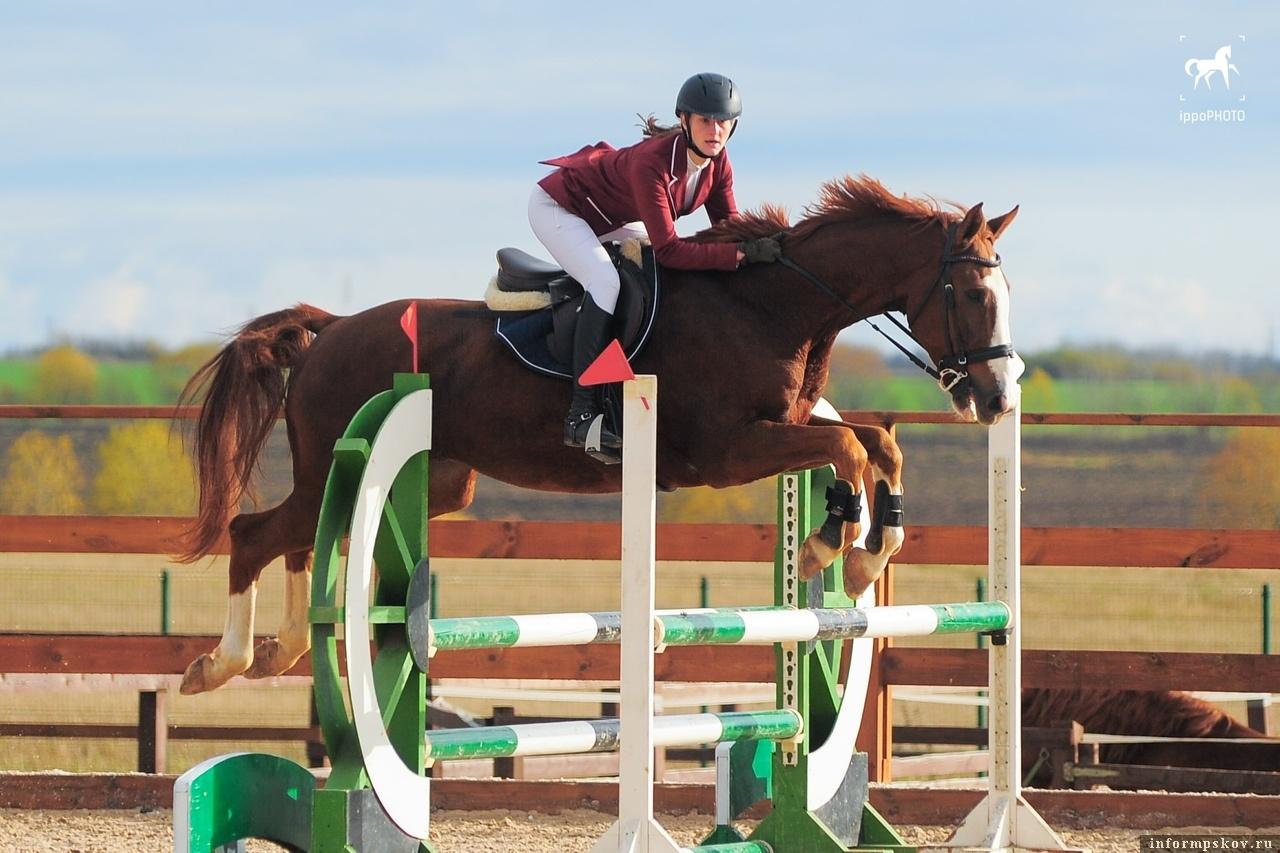 Фото: Федерация конного спорта Псковской области.