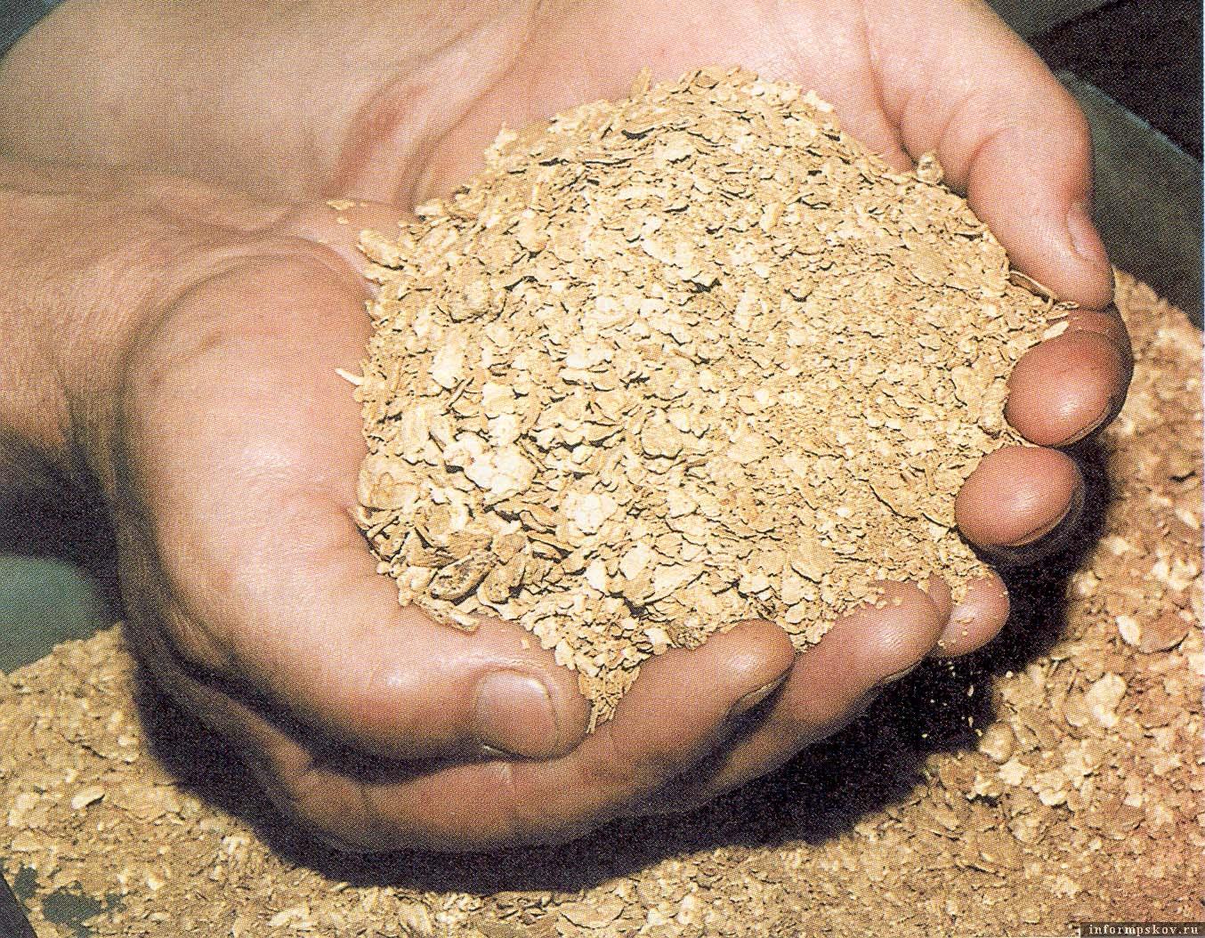 Инвестор планирует расширить объёмы производства за счёт переработки золотосодержащего сырья. Фото из архива героев публикации.