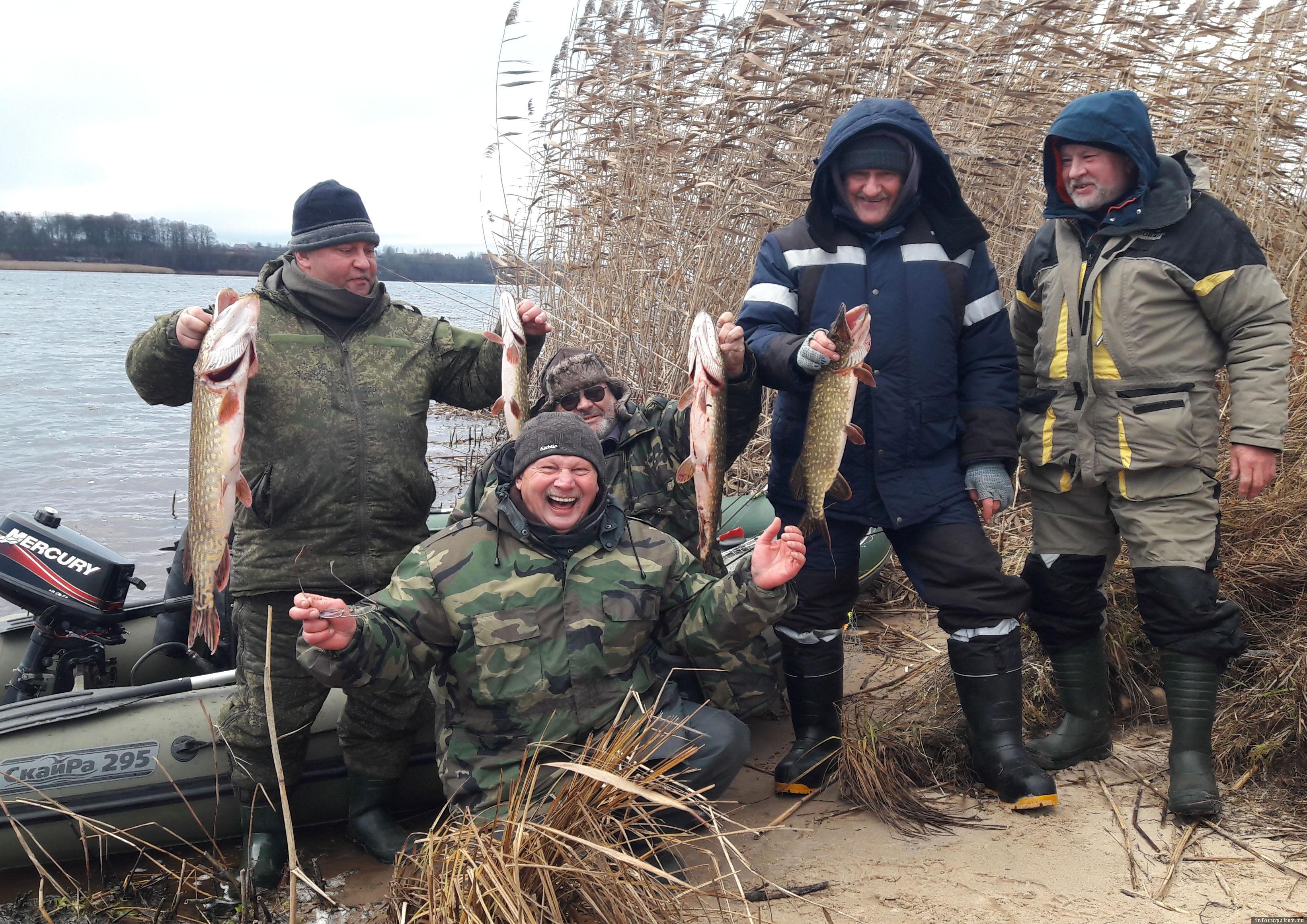 В воскресенье 15 ноября выдалась великолепная рыбалка на реке Великой. Хищник клевал на 6-ти метровой глубине. Фото автора.