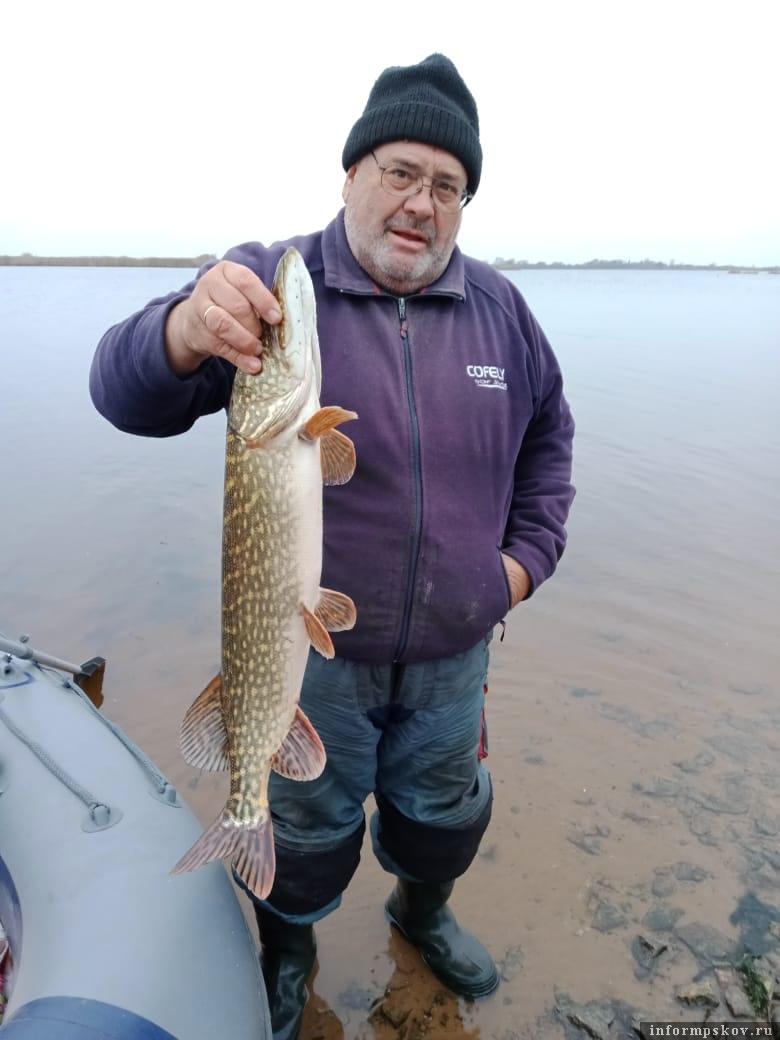 Пскович Вениамин Прозоров – рыболов и соблазнитель. Его уловы и рассказы о рыбалках очень часто зовут меня и моих товарищей н ареки и озера. Фото автора.
