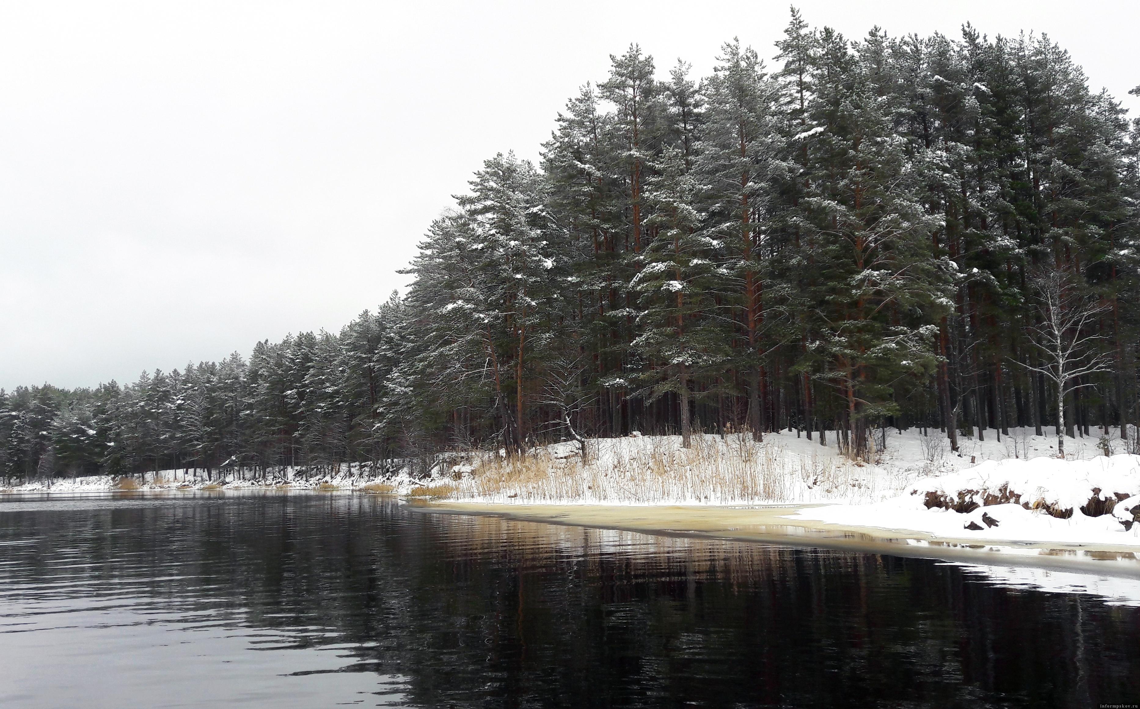 Река Желча  в декабре 2020 года – красота неописуемая. Фото из архива автора.