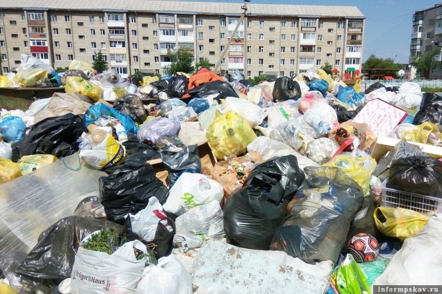 Запланировано убрать в 2021 году ещё 86 свалок. Фото tvtomsk