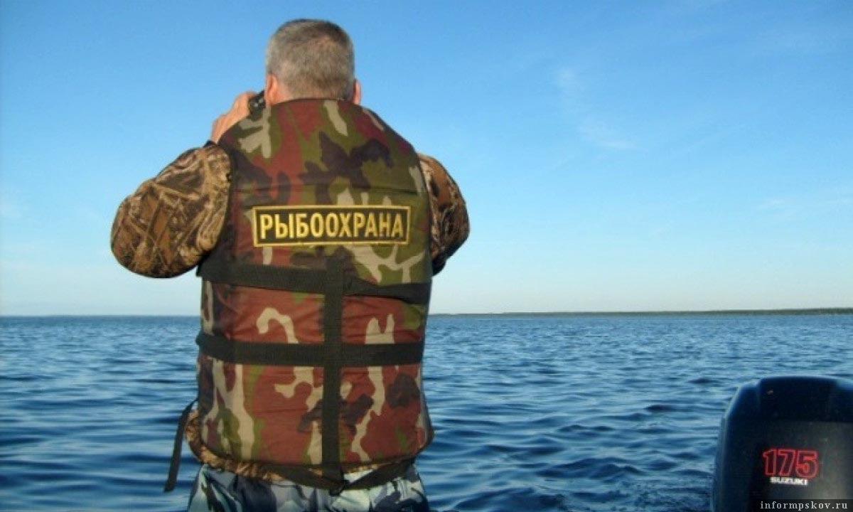 Рыболовы-браконьеры и рыболовы-любители – в чью сторону смотрит чаще рыболовная инспекция?
