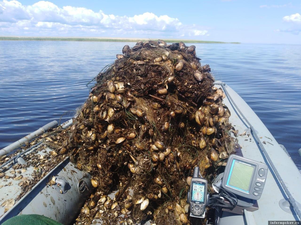 Вместо рыбы на крючке зачастую у троллингистов вот такой улов. Брошенные сети – бич псковских водоёмов.