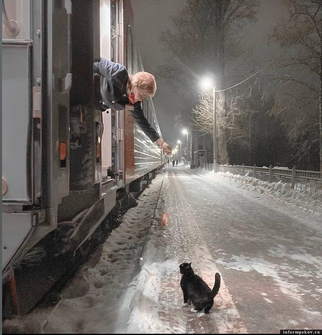 Фото: Дмитрия Маркова