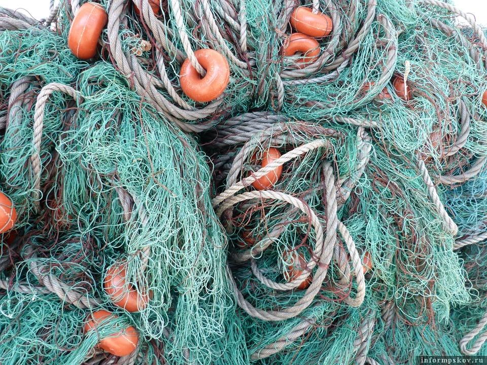 В заброшенных сетях гибнут тысячи рыб. Фото pixabay.com