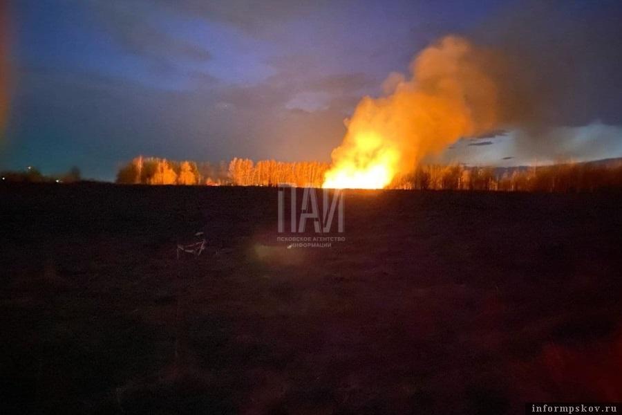 Трава горит так сильно, что угрожает жилым домам. Фото Кристины Васильевой