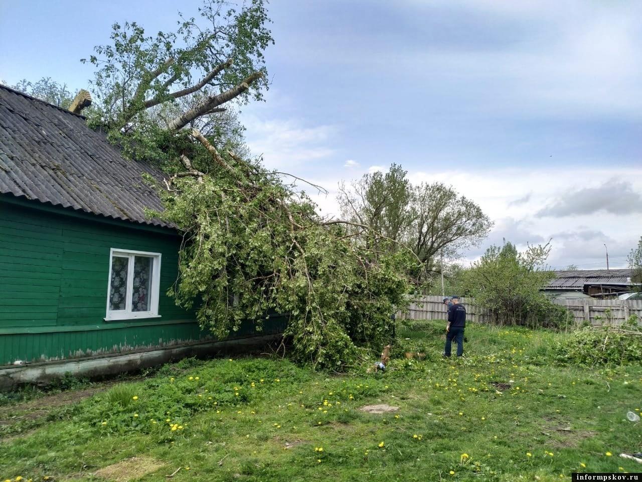"""Фото газеты """"Новосокольнический край"""""""