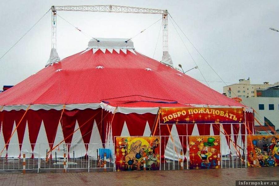 Частные цирки смогут получать правительственные гранты на развитие