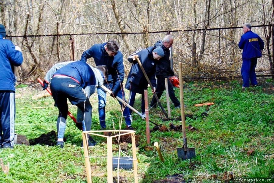 Первые растения преподаватели и студенты уже посадили. Фото Луки.ру