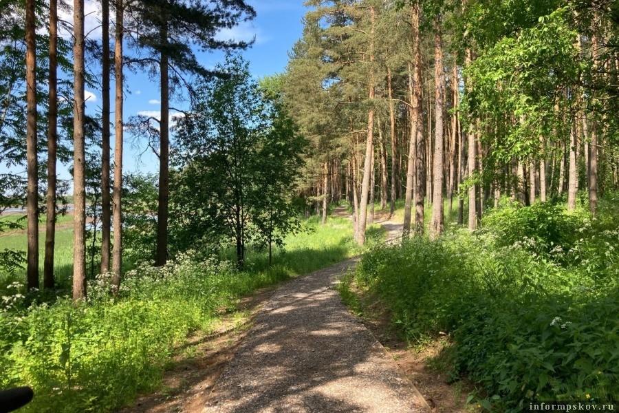 Много деревьев, зелени и чистого воздуха. Фото газеты «Великолукская правда. Новости»