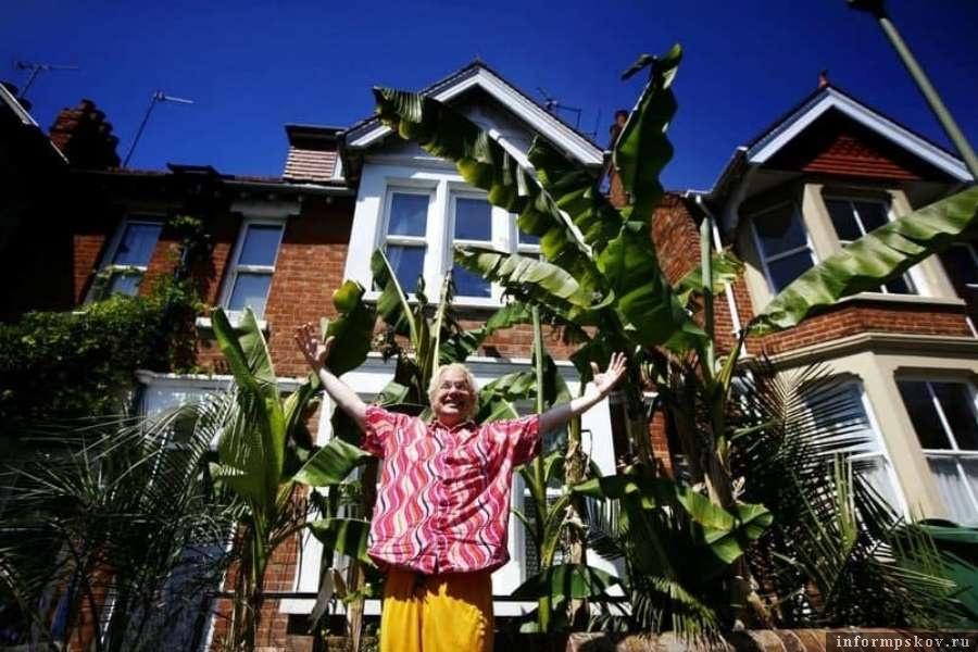 Радости англичанина нет предела. Теперь он сможет попробовать свои бананы. Фото Telegram