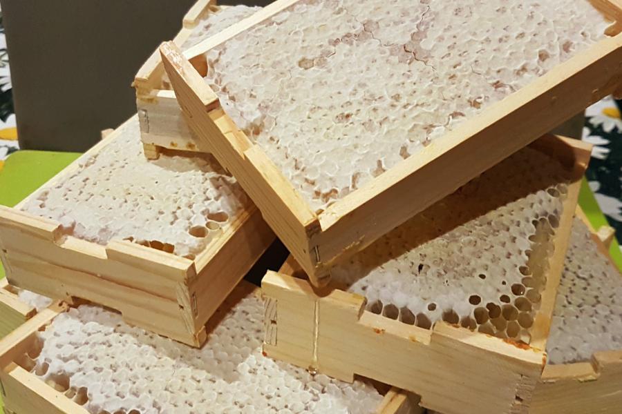 Житель Дедовичского района украл мёд прямо в сотовых рамках. Фото фермер.ру