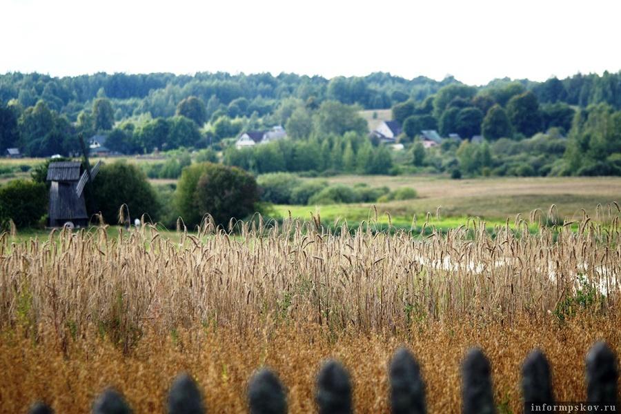 Вид на село Михайловское. Фото Вконтакте