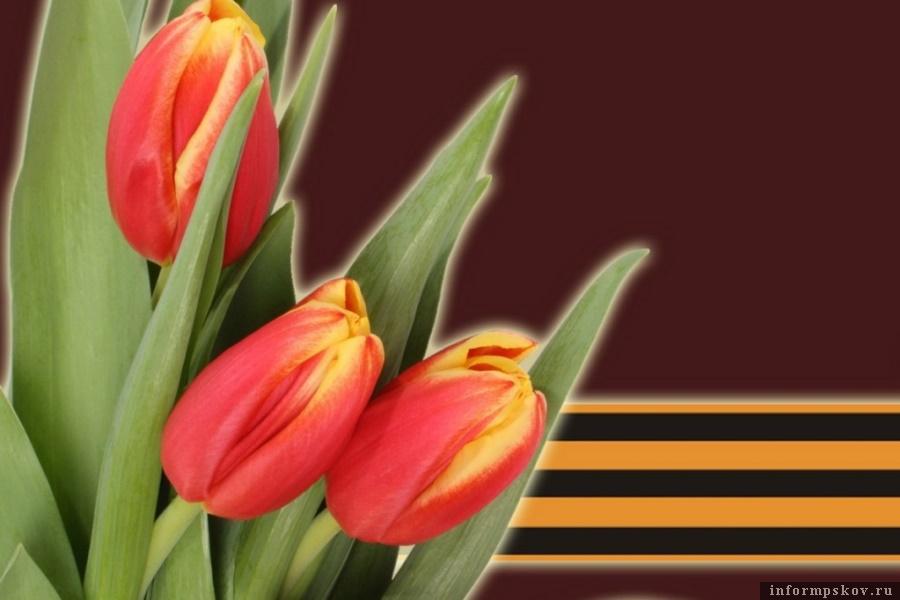 Луковицы тюльпанов станут цветами для погибших солдат. Фото Вконтакте