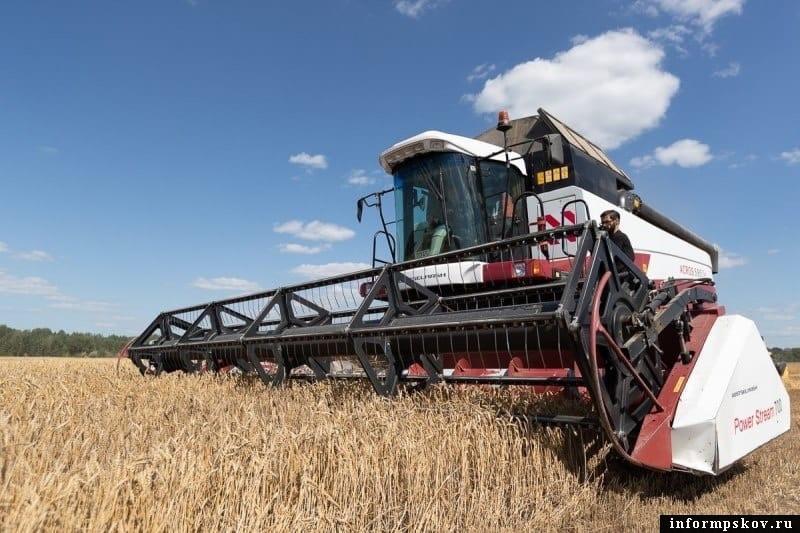 90% зерновых убрано с полей в Псковской области