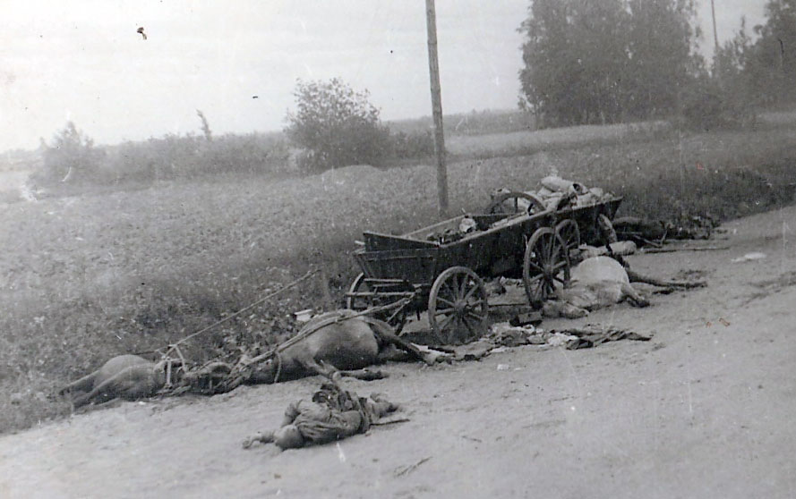 Попавший под артобстрел обоз дивизии. Вечная память павшим героям.