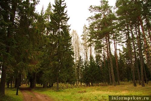 На фото: фрагмент парка в Холомках