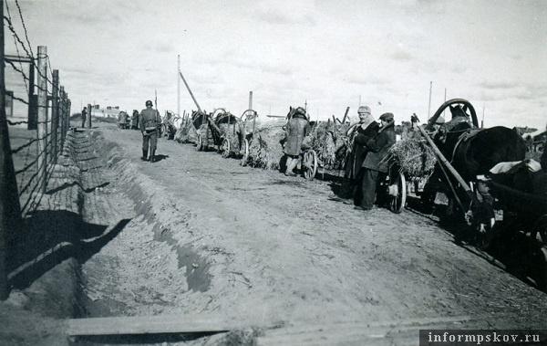 На фото: Весна 1942 года. Местные жители привезли солому. Слева в кадре периметр ограждения лагеря. Вокруг ходит часовой.
