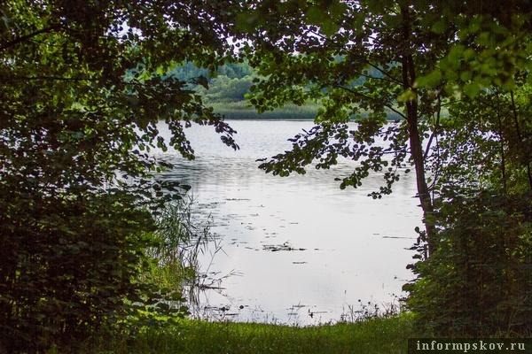 На фото: выход к озеру