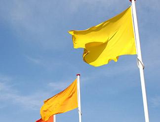 Жёлто-оранжевые флаги в Пскове не нравятся ни горожанам, ни властям