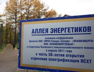 """Работники """"Псковэнерго"""" монтируют уличное освещение на Аллее энергетиков в Пскове"""