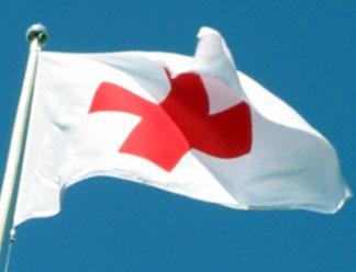 Самым заботливым читатели ПАИ признали Псковский Красный Крест